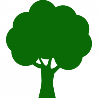 Helps trees grow upward and outward
